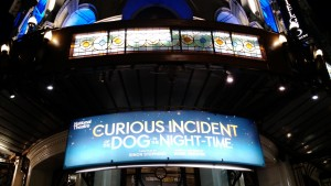 Curious Incident of the Dog in the Night-Time Theatre London