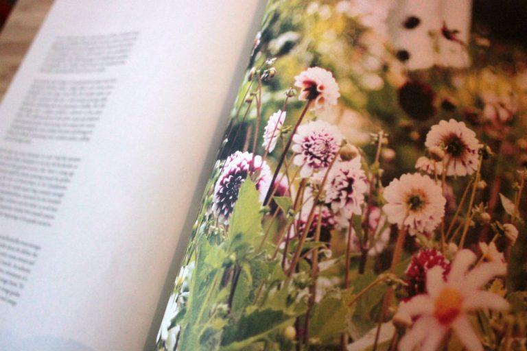 Cedar Magazine Flowers image
