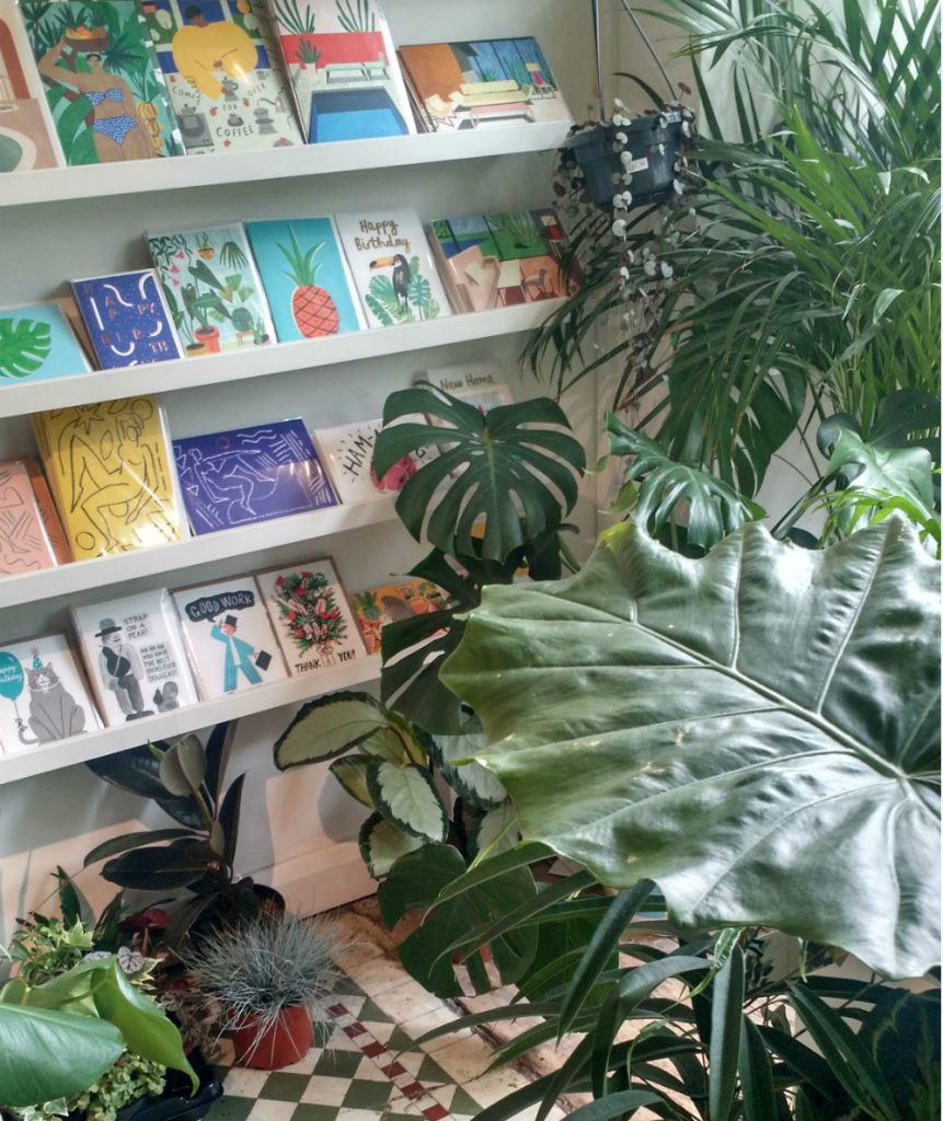 Mar Mar in Margate with plants and cards